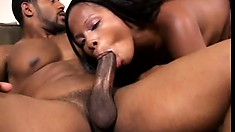 She uses a purple dildo to get her pussy ready for his big cock