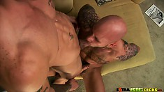Two studs go at each other's member with their mouths and hands