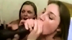 Some Hot Wifes Stroking Hubbys Nice Big Cocks