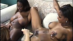Two stunning ebony girls fuck their white girlfriends with strap-ons