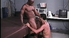 Three black studs with hot bodies love to suck cock and to get fucked in the ass