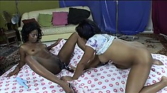 Two black lesbians embark on a wild adventure to find intense pleasure