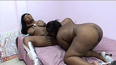 Black BBWs share the love with their plus sized sistas in bed