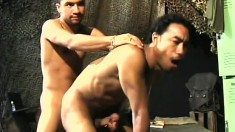 Latino and black gays get it on with cock slurping and hard ass pounding